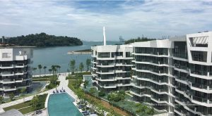 Read more about the article Corals at Keppel Bay